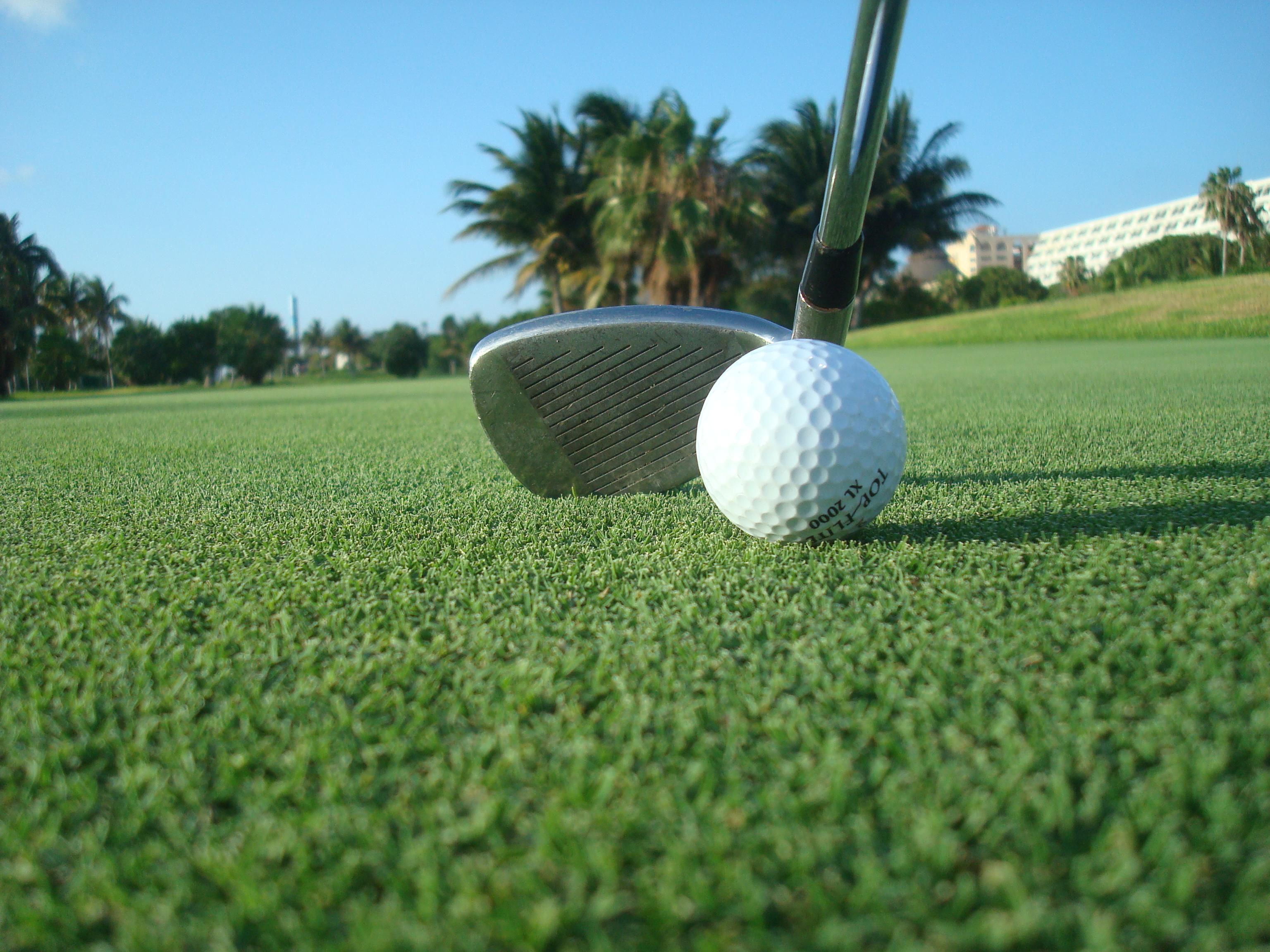 На территории отеля есть поля для гольфа