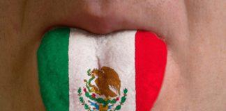 Язык Мексики