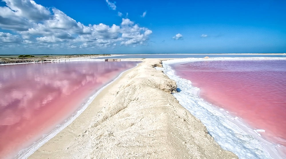 Рио Лагартос и Розовое озеро